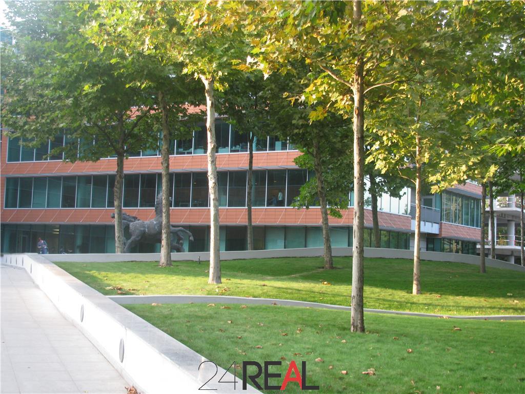 Inchiriere Birouri - Bucharest Business Park