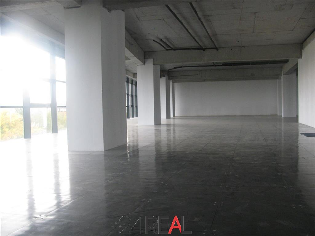 Birouri de inchiriat in Art Business Center V - de la 220 mp