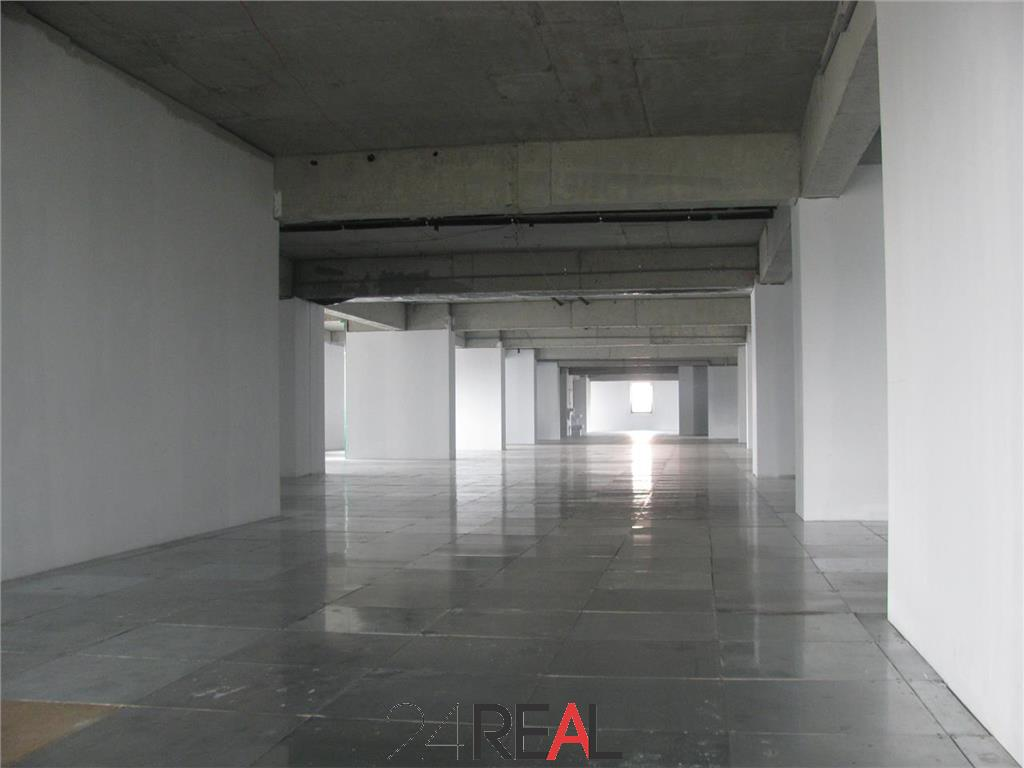 Birouri de inchiriat in Art Business Center V - de la 237 mp
