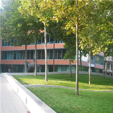 Inchiriere Birouri - Bucharest Business Park